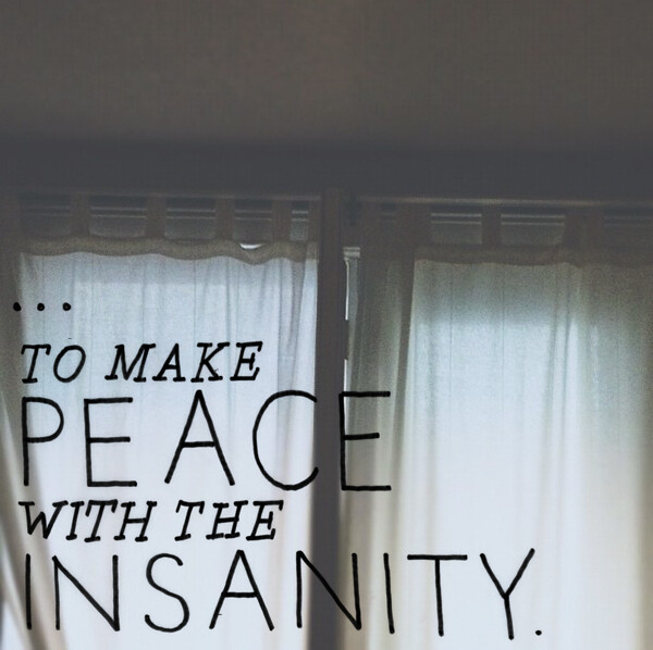 make peace with the insanity