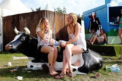 IJs eten terwijl je op een koe zit is inderdaad heel grappig (3FM) Tags: music festival radio foto ben lowlands muziek koe ll12 tropisch acampingflighttolowlandsparadise biddinghuizen 3fm warmte houdijk fotobenhoudijk acampingflighttolowlandsparadise2012