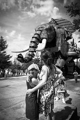 Peur ! (l3enjamin) Tags: girls blackandwhite bw elephant art girl face blackwhite big little noiretblanc deluxe fear royal ile nb duel ready giants facetoface elefant nantes compagnie 44 geant noirblanc spectacle peur artderue éléphant royaldeluxe faceaface géants iledenantes faceàface