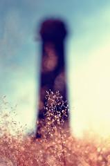 brosch tower (NEOTRINOS) Tags: tower alsace nik brosch d7000 35mmf18g