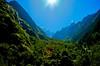 One of my fav. pic.. we missed it while going due to mist and rain (Sivaraj Mathi) Tags: nikon himalaya hemkund valleyofflowers vof nikond5000 himayam