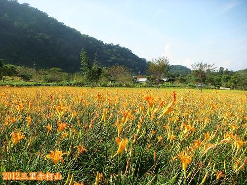 玉里赤柯山 (113).jpg