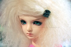 Fluff (Poudrin) Tags: ball doll mini annie bjd msd jointed dollzone