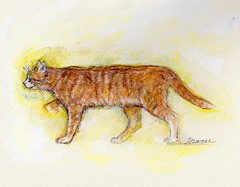 Walking cat/歩く猫(12) (Maruhikaru) Tags: cat walking colored /acrylic paints/water pencil/猫の絵/歩く猫/walking cat/ cat/歩く猫(12)maru cat/歩く猫(12)