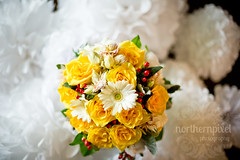 Christine & Nathan- Bridal Bouquet (Shauna Stanyer (Northern Pixel)) Tags: flowers wedding canada beautiful photography george backyard bc prince columbia pg pixel british bouquet bridal northern wilkinspark northernpixelphotography miworthhall