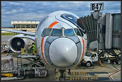 """JA789A ANA All Nippon Airways """"Star Wars BB-8"""" (Bob Garrard) Tags: ja789a ana all nippon airways star wars bb8 iad kiad boeing 777"""
