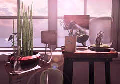 Of Seeds and Windows (Zee (Zuleicca Resident)) Tags: applefall secondlife sl keke kalopsia kustom9 plants metaverse marukado metaversehomestyle interior decoration