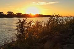Sonnenuntergang am Rhein bei Dsseldorf Wittlaer (Haeppi) Tags: dsseldorf wittlaer nrw germany deutschland rhein rhine sonnenuntergang sunset nature natur