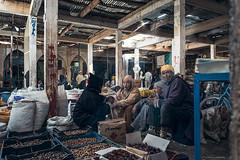 PUPA Desert Expedition 2016-01-07 (tine_stone) Tags: 2016 africa afrika expedition jnner kalendershooting landschaft marokko pupa pupadesertexpedition pantrucksat winter wste desert limitededition onlocation people team tine tinefoto kasbahmoyahut marokko|morocco morocco