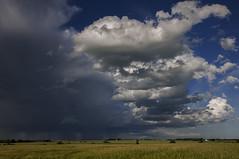 July storm (Len Langevin) Tags: alberta canada storm clouds thunderstorm landscape sky nikon d300 nikkor 18300