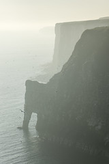 Dawn at Bempton cliffs (Keartona) Tags: bempton cliffs yorkshire coast dawn sunrise sea dramatic coastline september beautiful morning england english landscape seascape arch rockarch nature birds gannets