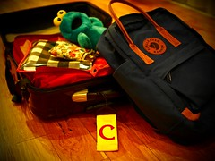 001 : 365 (Camille C) Tags: project365 365 olympus omd em5 micro43 mirrorlesscamera travel packing bags melancholy camillec