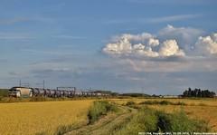 E633 204 (MattiaDeambrogio) Tags: treno treni train trains e633 204 old vespolate wascosa prayforvardaro jesuisalberto iostoconvardaro forzavardi