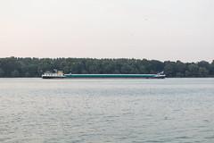 NKRS2909 (pristan25maj) Tags: green pristan pristan25maj brodovi boats reka river dunav danube photonemanjaknezevic nkrs