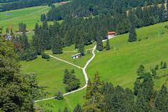Alemanha - Castelo Neuschwanstein (D.Bertolli) Tags: davoni dbertolli europa alemanha neuschwanstein
