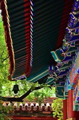 LamaTempleBeijingChina2012 (36)