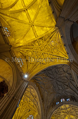 MHP_120618_9309.jpg (marc_homedes) Tags: travel color building art history tourism church monument colors beautiful vertical architecture spectacular wonder photography photo nice sevilla spain ancient pretty arch place shot cathedral interior faith religion gothic decoration picture nopeople tourist medieval seville andalucia christian unesco worldheritagesite indoors spanish inside vault christianity spirituality andalusia decor impressive wealth worldheritage tempel gothiccathedral mudejar grandiose medievalart christianart gothicstyle traveldestinations famousplace cathedralofseville santamariacathedral gothicart medievalcathedral cathedralofsaintmaryofthesee builtstructure