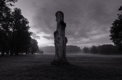 Stump in the Fog (Henrik Sundholm.) Tags: park trees mist tree nature monochrome grass fog sepia clouds landscape loneliness shadows sad sweden stockholm lawn stump lonely sverige erection sexual melancholy untouched hdr drottningholm bullied unsatisfied lovn ostracized