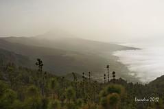 Tenerife (letrucas) Tags: tenerife teide calima polvosahariano
