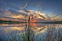 Quiet Tidings (Brian Koprowski) Tags: sunset sky lake reflection reed evening pond quiet pentax fisheye adventure slough hdr palos tallgrass cookcounty 10mm pentaxk5 briankoprowski bkoprowski 2013cc sagasnashkeeslough