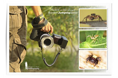 Back to nature (Ringgo Gomez) Tags: 1001nights 80200mm awesomeshot nikkor80200mm malaysianphotographers elitephotography nikond700 batterthangood sarawakborneo 1001nightsmagiccity mygearandme mygearandmepremium
