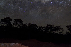 Pink Cliffs - Heathcote @ Night (mthomson34) Tags: tree stars astrophotography heathcote milkyway pinkcliffs