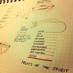 The veins connect, at times, through fruits of the spirit and again through the true vine Lord Jesus. (Paul Goode) Tags: lotsofnotes instagram