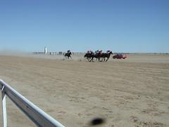 Birdsville Races (spelio) Tags: australia queensland outback travel 2003 kenjune birdsville dirt track 2610views170614 npe bug fly 4566views230614 note 7607views050714 fav help search 15228views190814 16020views2914 23627views170716 notes fave