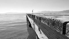 Peir (JordanLehn) Tags: summer lake tahoe laketahoe northshore tahoecity jordanlehnphotography