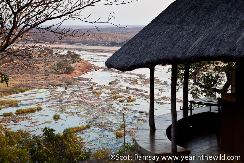 Kruger National Park - South Africa
