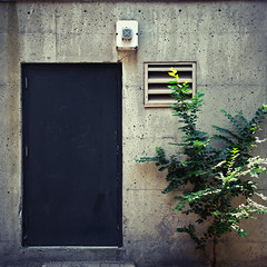 The Bunker (Torganiel) Tags: door tree facade square concrete vent chinatown industrial montreal g10 torganiel