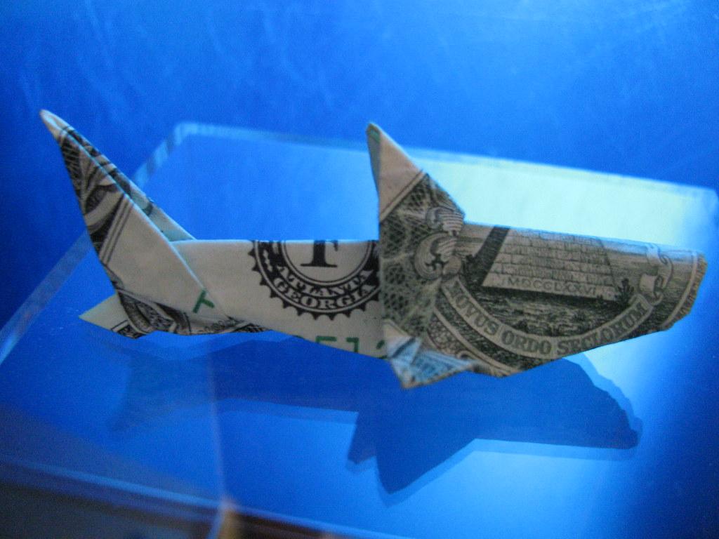 The worlds newest photos of fish and fold flickr hive mind shark morpheology tags fish money shark origami dollar fold jeuxipadfo Choice Image