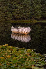 Silent Reflection (1) (Shuggie!!) Tags: trees water forest reflections landscape boats scotland waterlilies trossachs hdr lochrusky