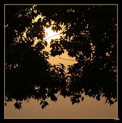 DSC05784-003 (Lulot Ruiz) Tags: morning sun sunrise photography walk sunday photowalk ksa alkhobar