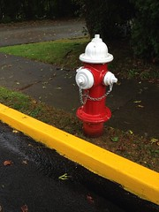 Red Hydrant (enveehaze) Tags: red wet yellow sidewalk firehydrant curb brightred curbside 1830 365d