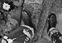 Just a pair of Doc Martens. Just a pair of 1460's. Just the best boots ever. (CWhatPhotos) Tags: garden pond water looking down cwhatphotos artist artistic olympus epl1 four thirds digital camera 1442mm zoom lens 8 hole doc docs doctor marten martens air wair airwair bouncing soles original eos close up boots boot drmartens docmartens dms adobe lightroom cushion sole yellow stitching yellowstitching foot photo photos picture pictures with that have dr comfort cushioned wear feet foto fotos which contain footwear photography light navy blue z welt vdmsole vdm drmarten men mens flickr