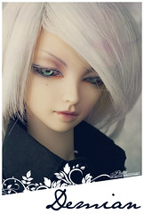 My first BJD - tagged by Cenarius (... Pit ) Tags: vampire tag meme elf sd bjd cp luts delf limited 07 demian nanuri