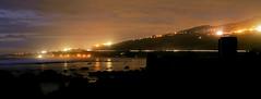 DSC01786(3) (solitary lion simba) Tags: night island nuit réunion île
