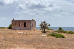 Cala Reale (Asinara) (agosto957) Tags: asinara carcere defender gita italia jeep mare sardegna