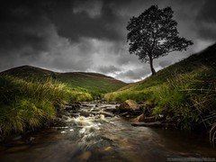 River Derwent (Richard Walker Photography) Tags: rocks landscape clouds river peakdistrict trees mountains longexposure northyorkmoors sky