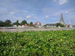 IMG_20160908_100321 (geraldm1) Tags: thailand bangkok tropics tropical asia thai chaophrayariver
