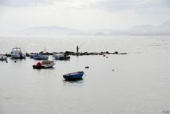 fishing on the rocks-pescando en las rocas-DSC_0337-W (taocgs) Tags: paisaje landscape pescador fisherman pescando fishing mar sea bruma mist barcas boats aguilas murcia espaa spain