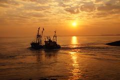 Westerschelde fisher boat (Dannis van der Heiden) Tags: sunrise westerschelde terneuzen sun zeeland netherlands fischerboat boat silhouette water slta58 sigma18300mm goldensky goldensun