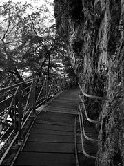 Gorges du Fier (AmyEAnderson) Tags: bw railing cliff gorge walkway suspended footbridge canyon rhonealps planks spring