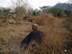 rokcs (Sasha India) Tags:              ometepeisland ometepe nicaragua journey travel             eljardindelavida puntagorda balgue