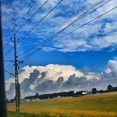 INSTAGRAM 365 Day 237: Train Views (tomas_nilsson) Tags: instagram365 sweden skne sknetrafiken train rails railway summersky blue bluesky clouds cloudscapes fields fromthearchive vivid colorful cellphonephotography lg g4 snapseed postprocessing