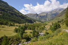 Alpine valley in summer (dfromonteil) Tags: alpes alps landscape paysage green vert mountains montagnes chemin randonne path camino torrent clouds nuages ciel sky blue bleu summer t nature valley valle trees arbres