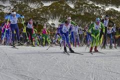 Kangaroo Hoppet (phunnyfotos) Tags: phunnyfotos australia victoria vic northeastvictoria fallscreek bogonghighplains alpine ski skiing xc xcskiing crosscountry skier skiers start kangaroohoppet loppet race colour color snow winter lycra nikon d750 nikond750 42km worldloppetseries