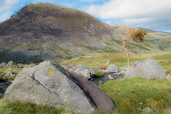 Timeless (Lee~Harris) Tags: landscape landscapes outdoor rugged rock rockformation wales mountain sky tree grass scenic scenery uk