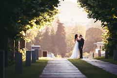 myo-0290 (rute golan) Tags: asturias bodaweddingvideorutegolanfilmdslrasturiascatedraloviedo fotografia galicia glow golan photo photographer rute video videographer wedding bodaweddingvideorutegolanfilmdslrasturiascatedraloviedofotografoestudioproductorapeliculamodernodiferentelascaldas